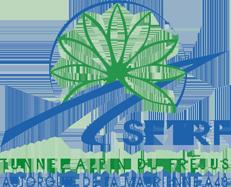 SFTRF (Société Française du Tunnel Routier du Fréjus)
